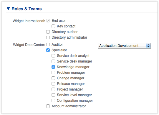 Knowledge Manager role in ITRP Person form.png